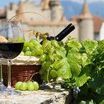 БожолеНуво – праздник вина во Франции превью