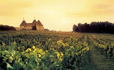 Что такое вино «Шато» превью