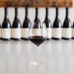 Особенности вин сорта Пино-Нуар