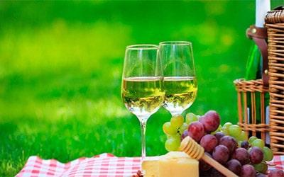 Какое вино взять на пикник превью