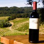 Что такое органическое вино превью